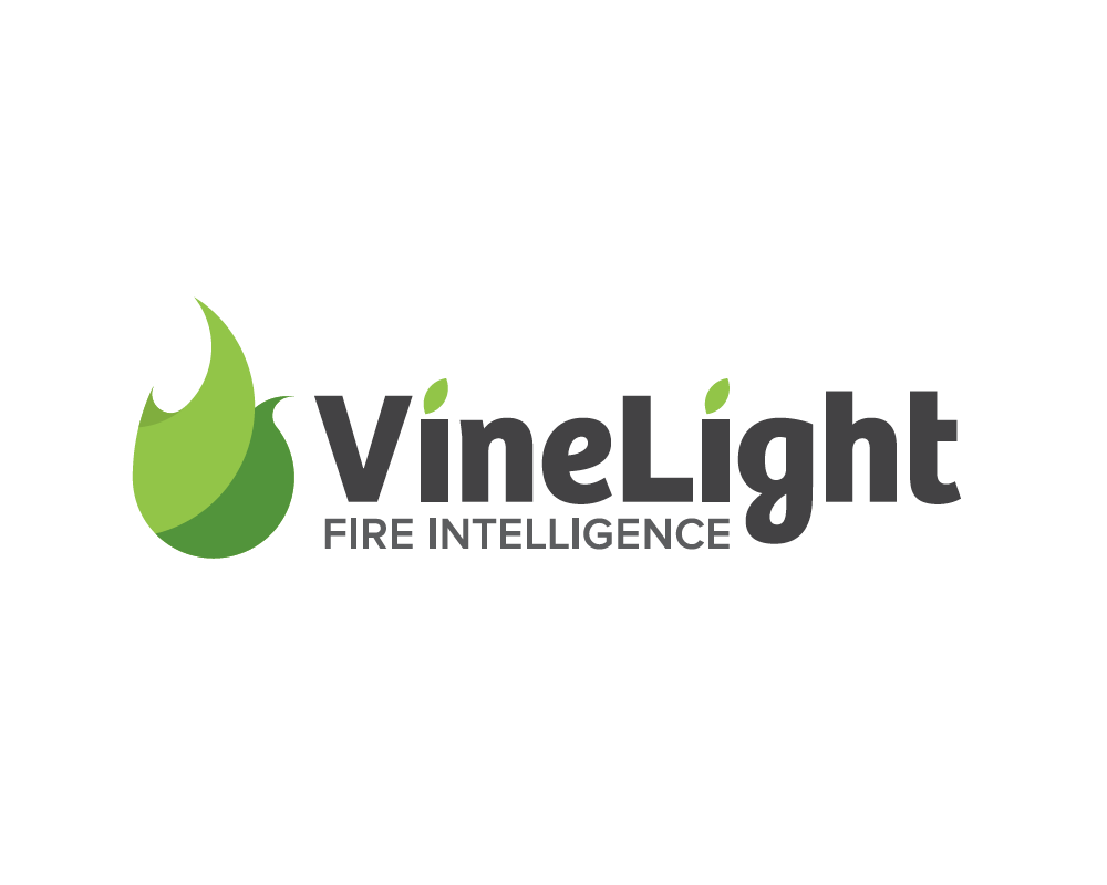 VineLight Logo